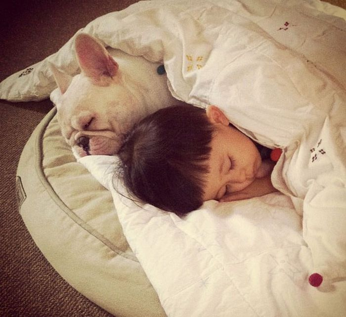A Dog Is Your Kid's Best Friend