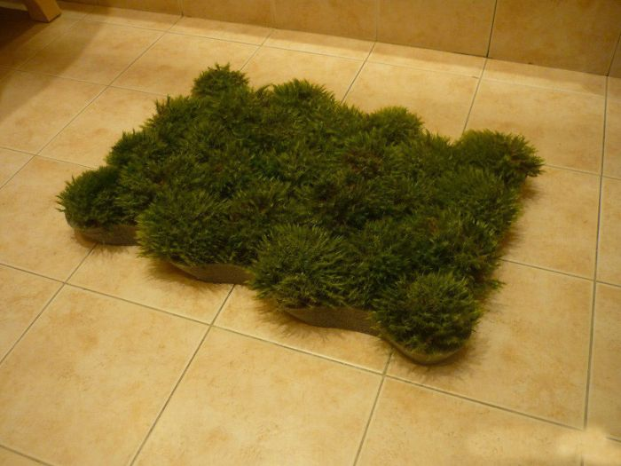 Homemade Grass Bath Mat