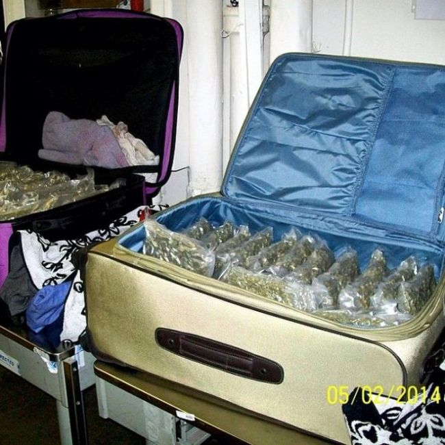 Why Would You Try To Bring This On A Plane?