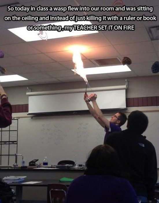 Awesome Teachers, part 5
