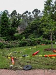 People Destroy Park Looking For Hidden Cash