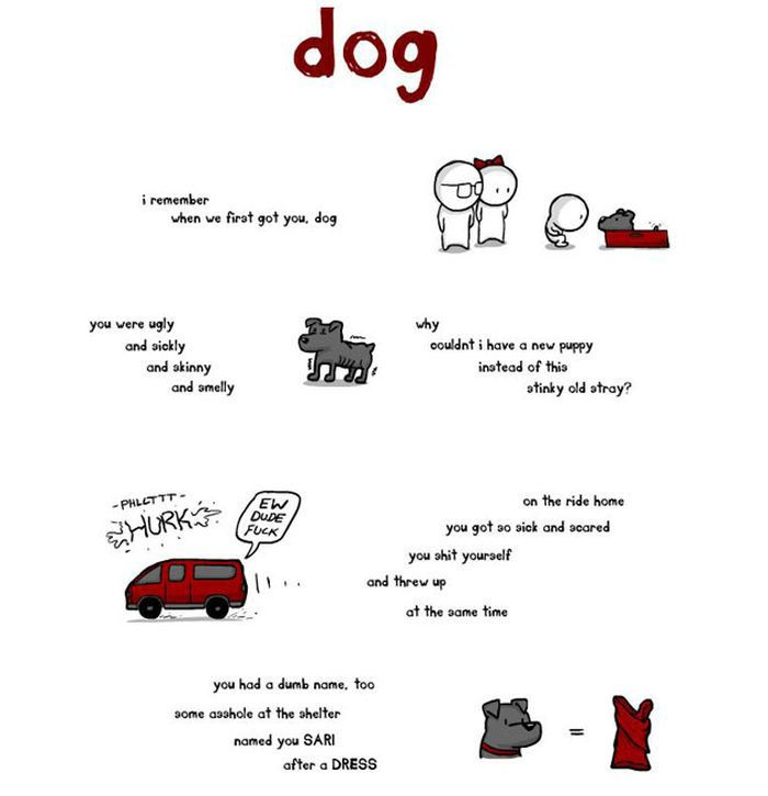 This Post Is For All The Dog Lovers Out There