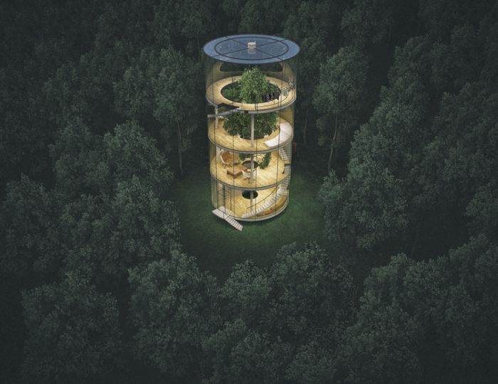 The Most Amazing Glass Treehouse On The Planet
