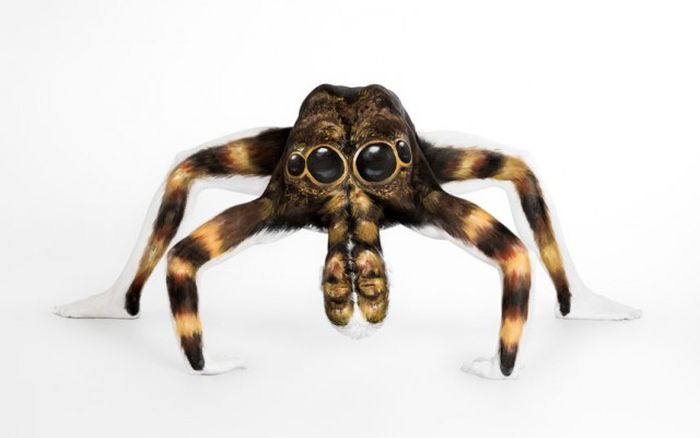 Model Transforms Into A Tarantula