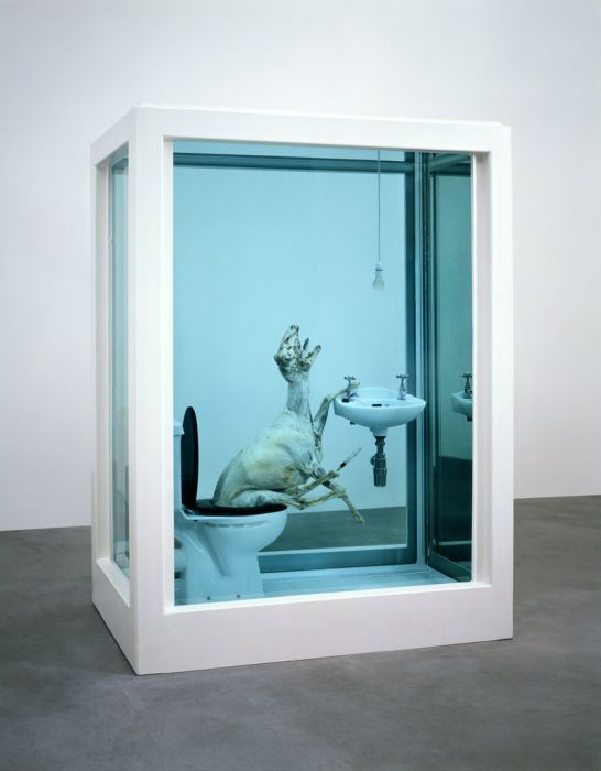 When Damien Hirst Turns Taxidermy Into Art Art