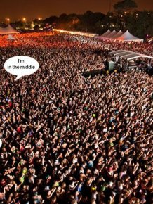 The Music Festival Experience In A Nutshell