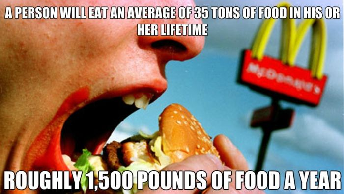 Random Facts You Need To Remember