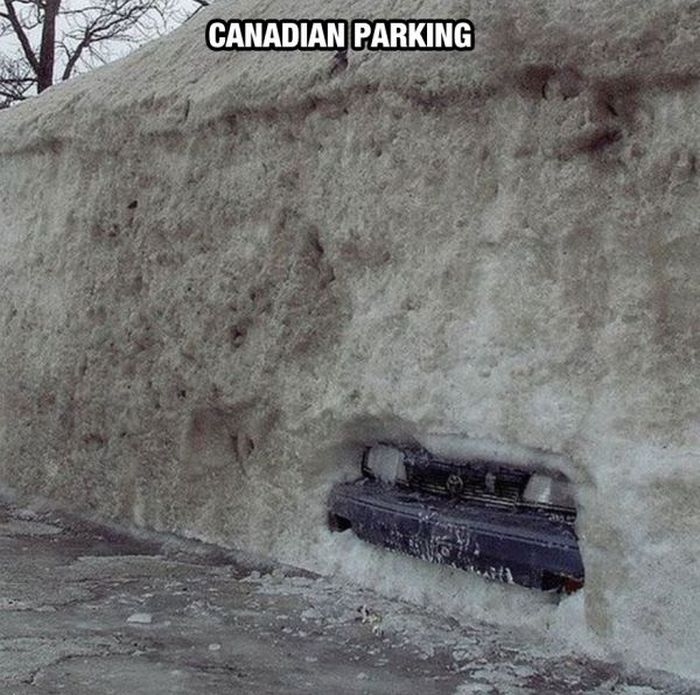 Things You Will Only See In Canada