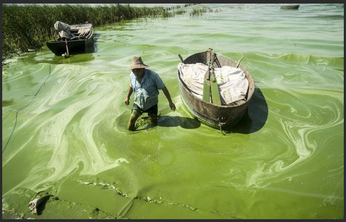 Disgusting Filthy Water In China
