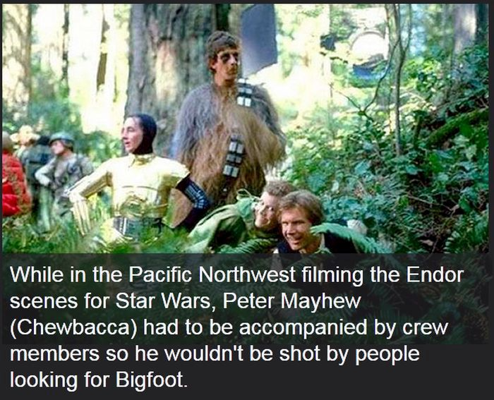 Facts You Didn't Know About Epic Movies