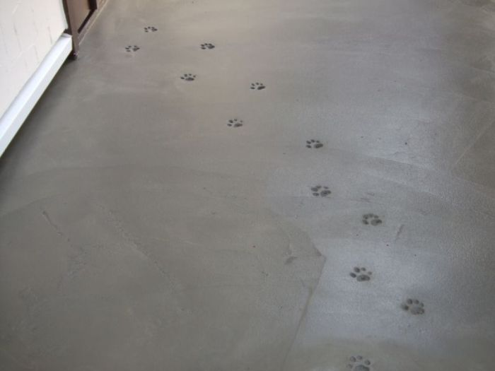Not So Mysterious Footprints In New Concrete