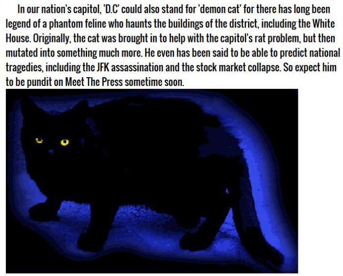 Terrifying Ghost Animals Across The Globe