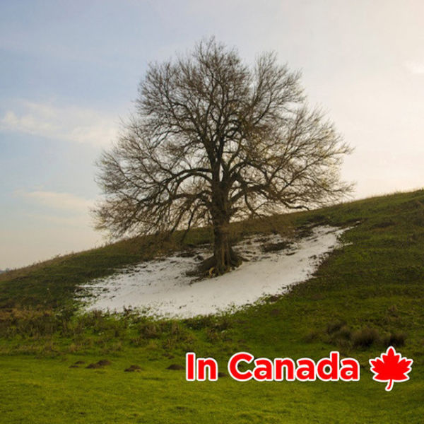 Life In Canada Compared To Everywhere Else