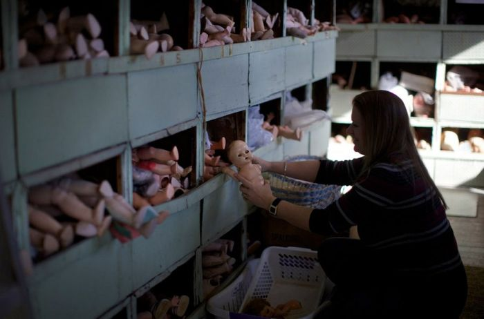 A Hospital For Dolls