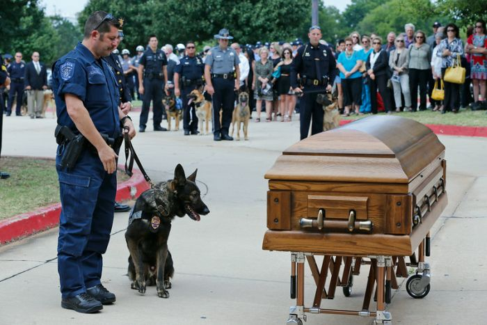 Police Dog Gets A Heroes Funeral