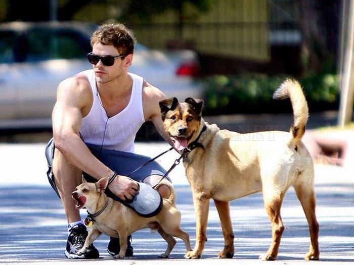The Best Celebrity Dog Fathers