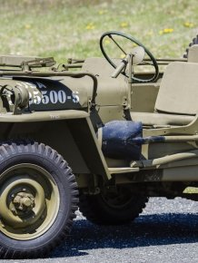 Willys Jeeps
