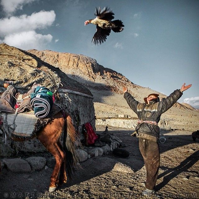 Why You Need To Follow National Geographic On Instagram