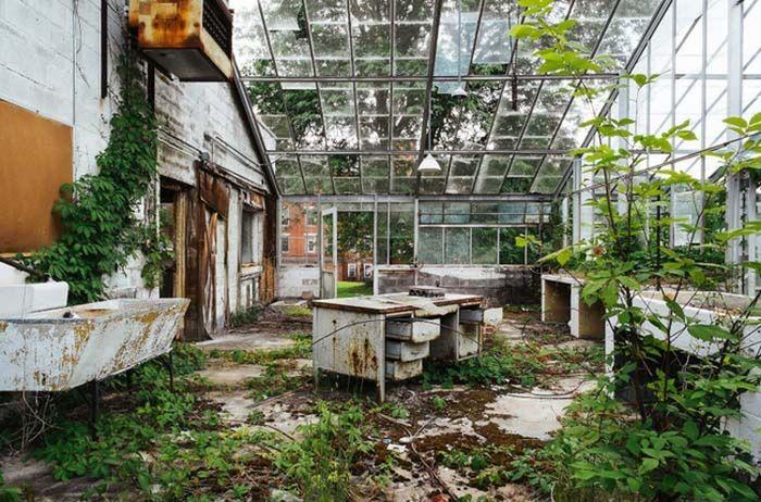 Abandoned Asylums Are Creepy Yet Somehow Beautiful