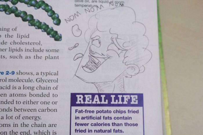Hilarious Drawings Make Text Books Better