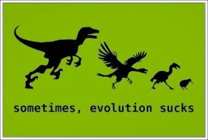 When Evolution Goes Wrong