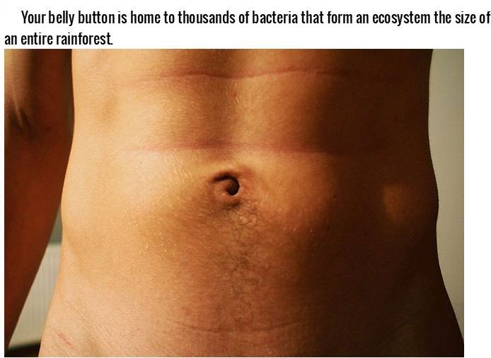 Incredible Facts About The Human Body