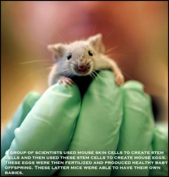 Strange And Surprising Science Discoveries