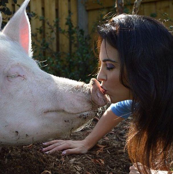 This Is What It's Like To Have A Pig For A Pet