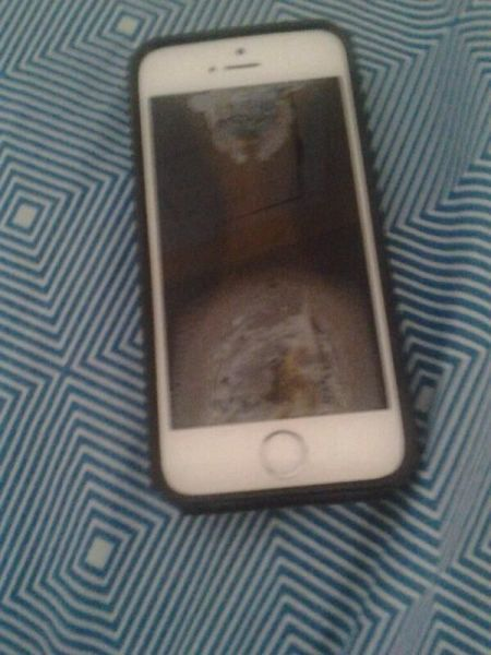 People Still Fall For The iPhone In The Microwave Prank