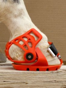 Horses Now Have Hoof Boots
