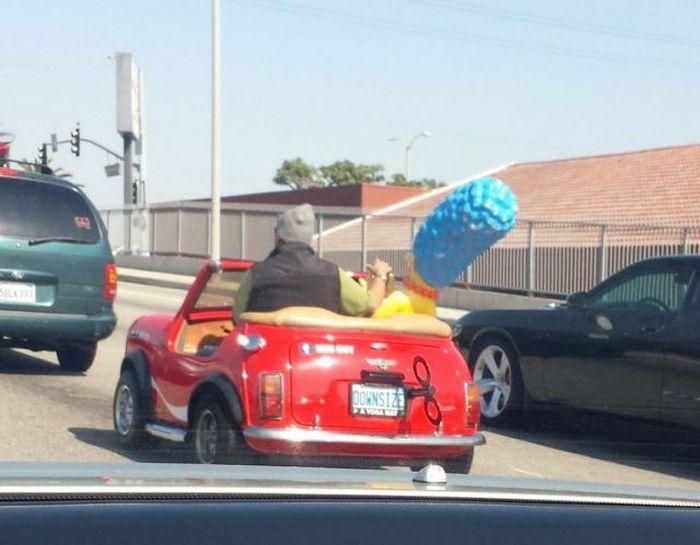 Funny Car-Themed Photos, part 11