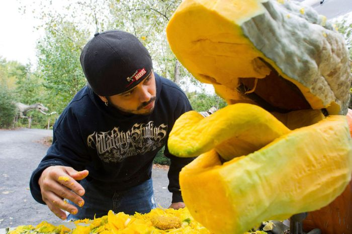 Giant Pumpkin Gets Transformed Into A T-Rex Head