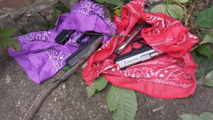 Guns In The Bushes