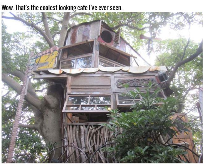 This Tree House Cafe Is The Perfect Spot To Relax