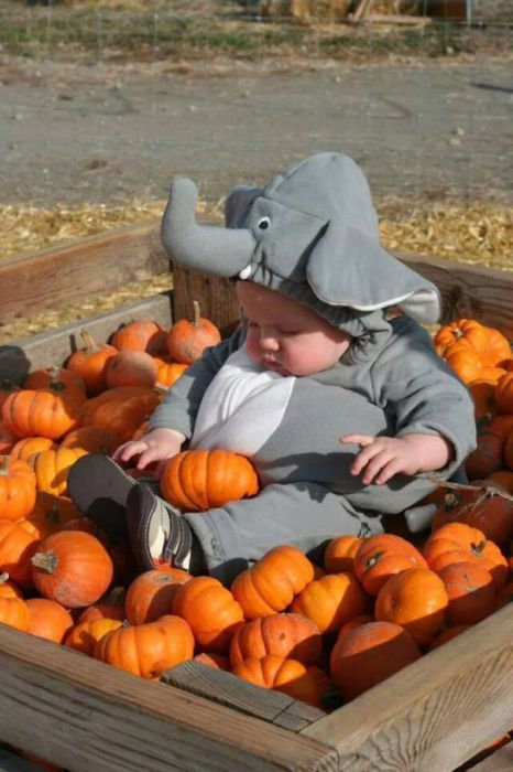 Kids Who Are Killing It With Their Halloween Costumes