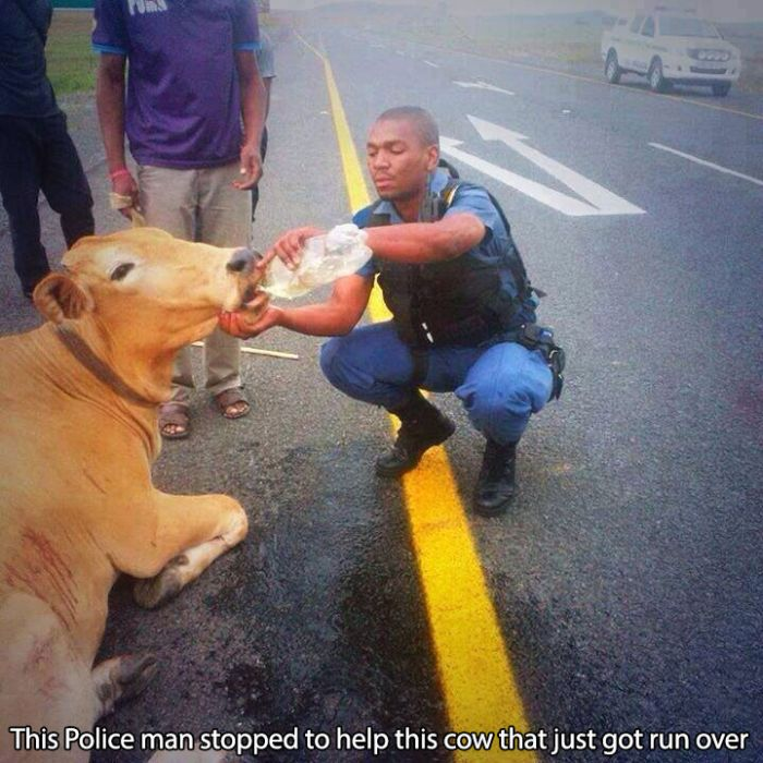 Cops That Make A Positive Difference In The World