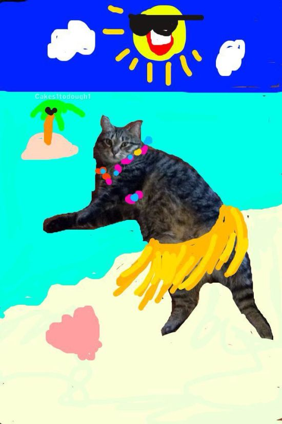 Guy Turns Snapchat Pictures Of Cats Into Masterpieces