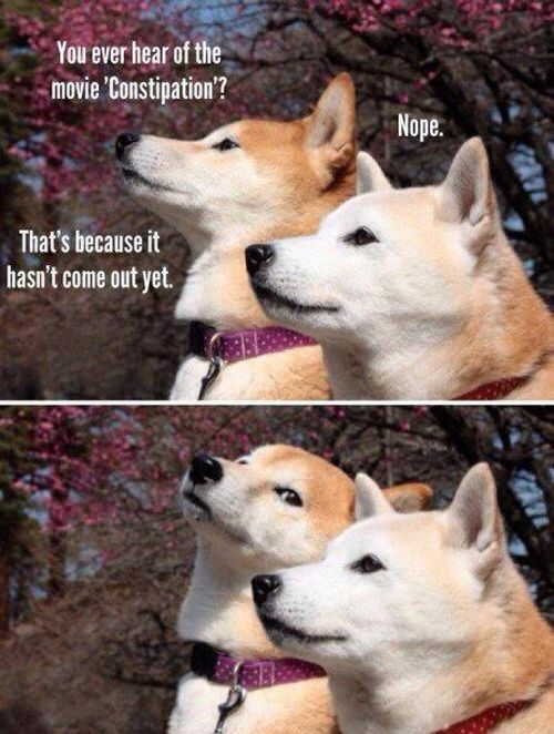 Bad Puns That Are Good Enough To Make You Laugh
