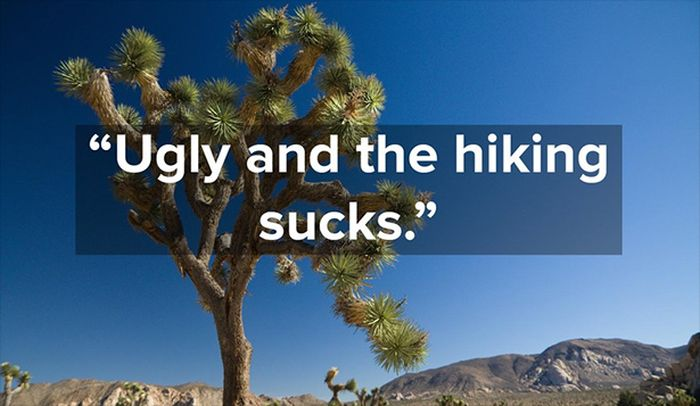 When National Parks Get Bad Reviews On Yelp