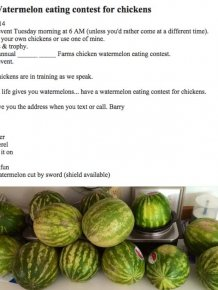 The Strangest Craigslist Ads Ever Created
