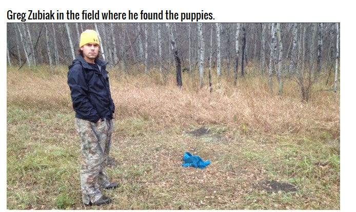 This Man Took In 20 Puppies