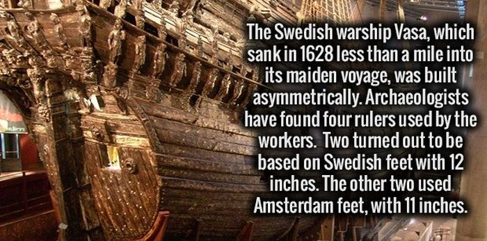 A Healthy Dose Of Facts For Your Brain