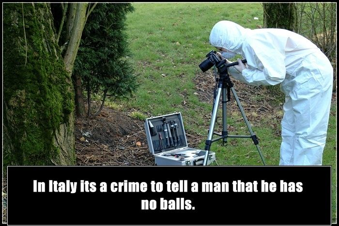 True Facts About Crime All Over The World