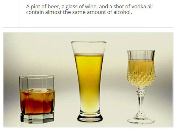 Amazing And Fun Facts About Alcohol