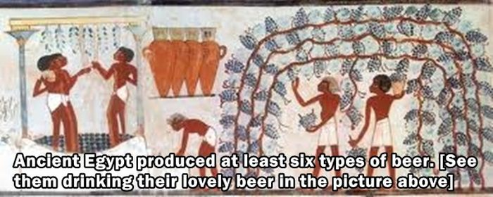 Odd But True Facts About History