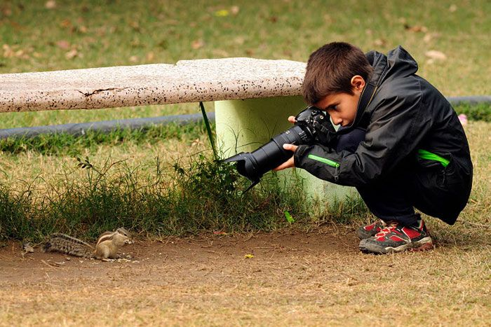 A 9 Year Old Wins Young Wildlife Photographer Of The Year