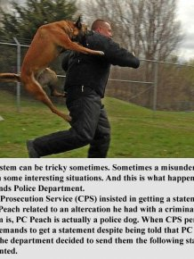 Police Dog Gives A Hilarious Statement To Prosecutors