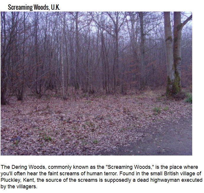Don't Go To A Haunted House, Take A Haunted Hike