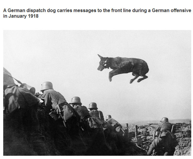 Incredible Photos From History