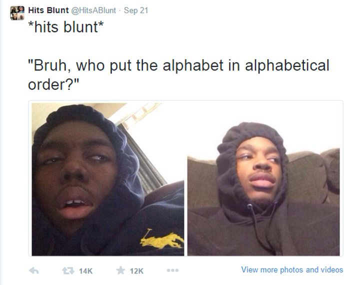 Hilarious Stoner Tweets That Will Make You Rethink Life | Fun